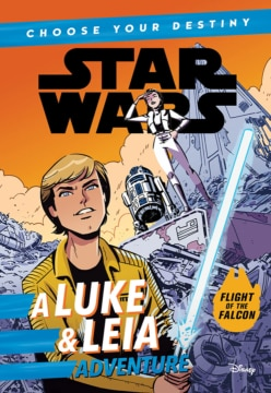 Choose Your Destiny A Luke And Leia Adventure Cover